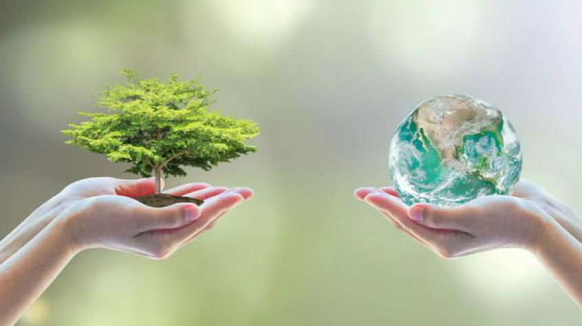 Valores e sustentabilidade marca Transporte Excelsior em 2019