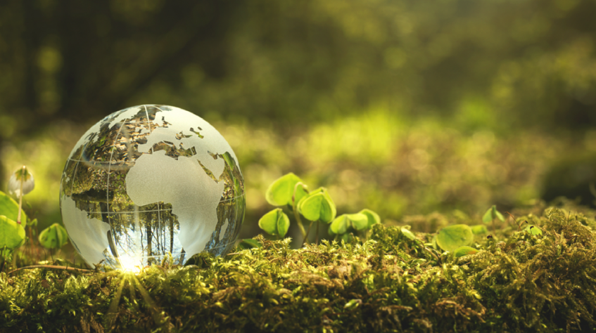 Transporte Excelsior lança campanha de Sustentabilidade e Responsabilidade Social 2020
