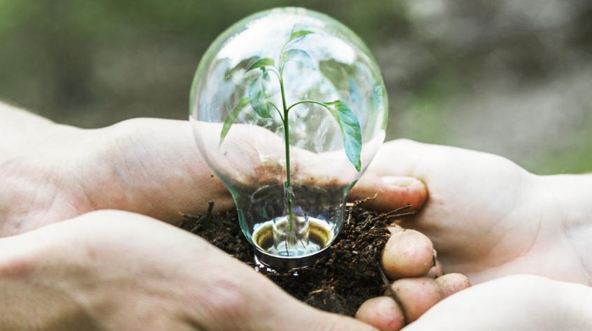 Transporte Excelsior lança campanha de Sustentabilidade e Responsabilidade Social 2021